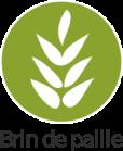 BDP-Logo-20111