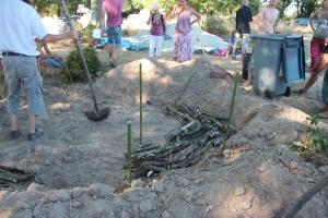 Le bois mort servant de réservoir deau