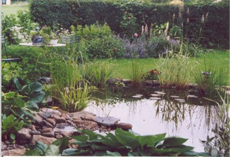 Une mare aménagée dans un jardin